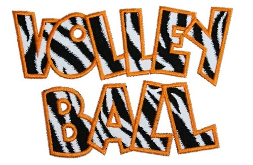 Volley Ball Applique